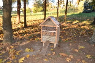 Insects' Hotel